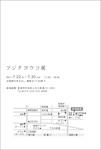 110610-b-藤田陽子.jpg